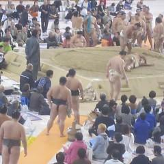 大相撲高山場所があった。の画像