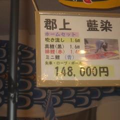 郡上八幡の鯉のぼりの画像