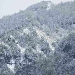 やっぱりこの時期には雪が降るの画像