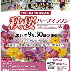 コスモスマラソン2018 9/30開催の画像