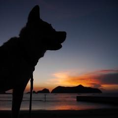 夕焼けの画像
