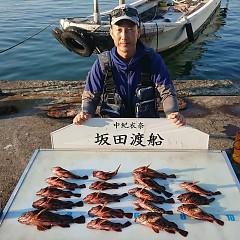ガシラ釣りの画像