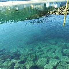 海が綺麗の画像