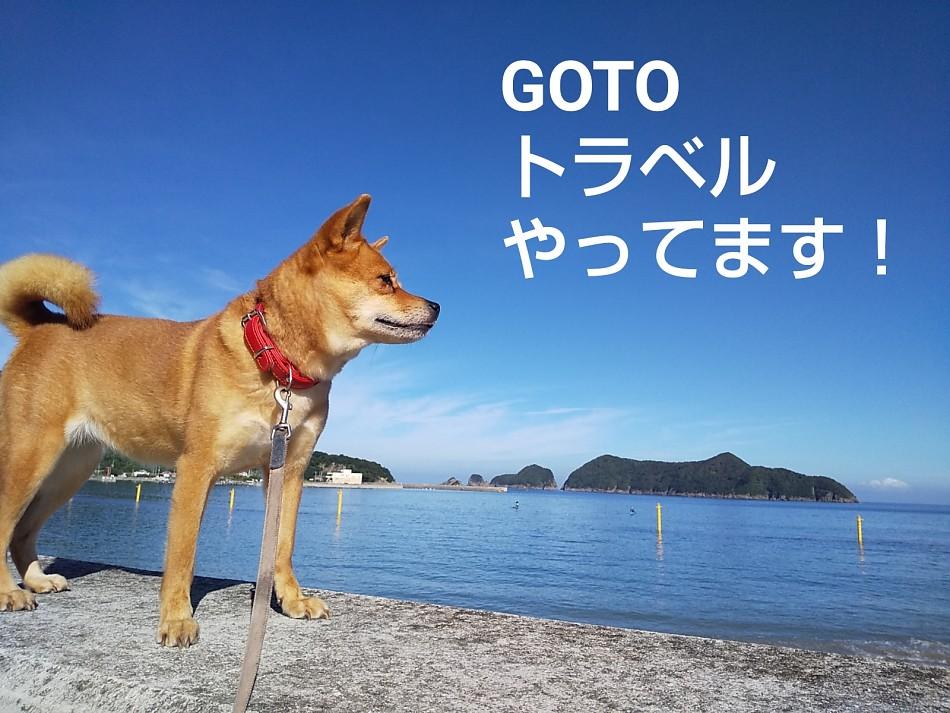 GOTOトラベル・リフレッシュ