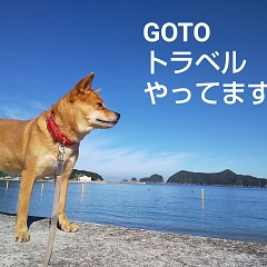 GOTOトラベル・リフレッシュの画像