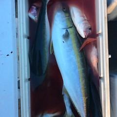 ■9月28日(水)昼便・ウタセ真鯛釣りの写真その10