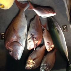 ■9月29日(木)昼便・ウタセ真鯛釣りの写真その5