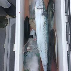 9月30日午前便・タテ釣りの写真その5