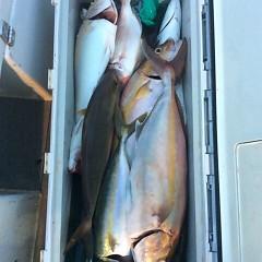9月30日(金)午後便・ウタセ真鯛釣りの写真その10