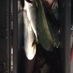 10月21日(金)午後便・ウタセマダイ釣りの写真その12