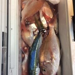 ■10月22日(土)昼便・ウタセ真鯛釣りの写真その8