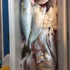 ■10月22日(土)昼便・ウタセ真鯛釣りの写真その10