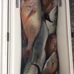 ■10月22日(土)昼便・ウタセ真鯛釣りの写真その11