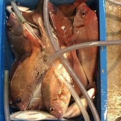 ■10月22日(土)昼便・ウタセ真鯛釣りの写真その12