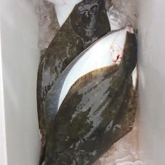 ■10月25日(火)朝便・ヒラメ釣りの写真その6