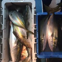 10月26日(水)午後便・ウタセ釣りの写真その9