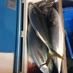 ■10月27日(木)昼便・ウタセ真鯛釣りの写真その11