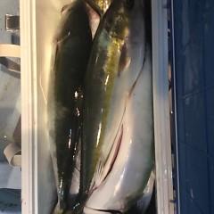 ■10月28日(金)昼便・ウタセ真鯛釣りの写真その10