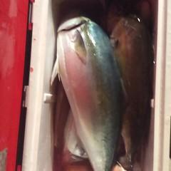 ■10月28日(金)昼便・ウタセ真鯛釣りの写真その11