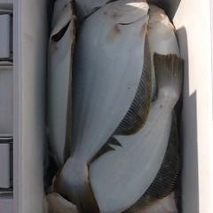 ■10月31日(月)朝便・ヒラメ釣りの写真その8