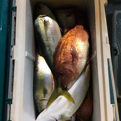 11月27日(日)午後便・ウタセ釣りの写真その5
