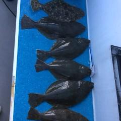 11月29日(火)午前便・ヒラメ釣りの写真その7