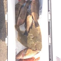 12月9日(金)午前便・ヒラメ釣り・午後便・ウタセ釣りの写真その1