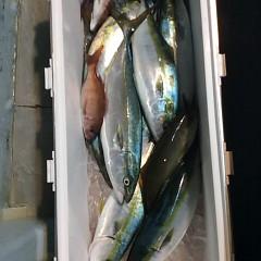 12月9日(金)午前便・ヒラメ釣り・午後便・ウタセ釣りの写真その3