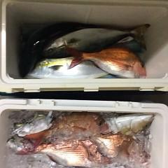 12月9日(金)午前便・ヒラメ釣り・午後便・ウタセ釣りの写真その5