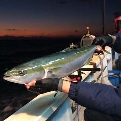 12月17日 (土)  午後便・ウタセ真鯛の写真その5