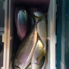 12月17日 (土)  午後便・ウタセ真鯛の写真その6