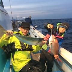 12月18日 (日)  午後便・ウタセ真鯛の写真その1