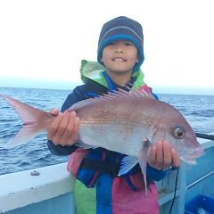 12月18日 (日)  午後便・ウタセ真鯛の写真その7