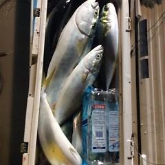 12月18日 (日)  午後便・ウタセ真鯛の写真その10