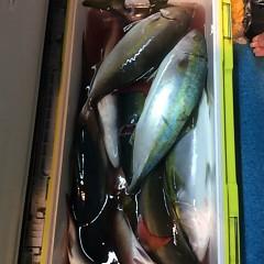 12月20日 (火)  午後便・ウタセ真鯛の写真その10