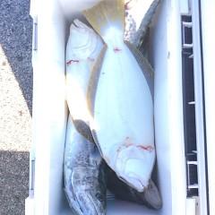 12月25日 (日)  ヒラメ釣りの写真その6