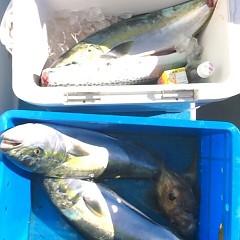 12月25日 (日)  ヒラメ釣りの写真その8