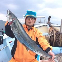 1月3日(火)8時〜イワシの泳がせ釣りの写真その4