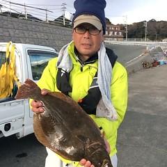 1月13日(金)イワシの泳がせ釣りの写真その3