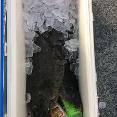 1月13日(金)イワシの泳がせ釣りの写真その7