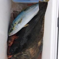 1月15日(日)午前便・ヒラメ・青物釣りの写真その1