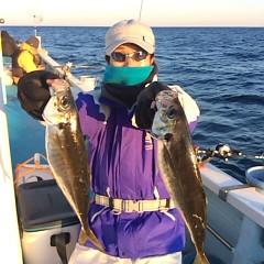 1月26日(木) アジ・釣りの写真その2