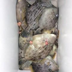 1月30日(月)午前便・カワハギ釣りの写真その1