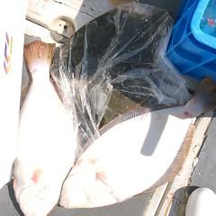 2月11日 (土)午前便・泳がせ釣りの写真その10