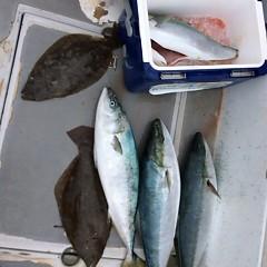2月22日 (水)1日便・泳がせ釣りの写真その5