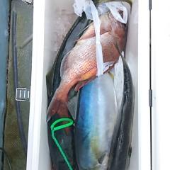 2月22日 (水)1日便・泳がせ釣りの写真その8