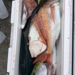 2月22日 (水)1日便・泳がせ釣りの写真その9