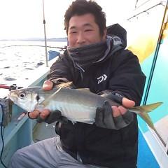 2月26日 (日)午後便・アジ釣りの写真その2