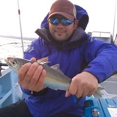 2月26日 (日)午後便・アジ釣りの写真その3