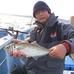 2月26日 (日)午後便・アジ釣りの写真その4